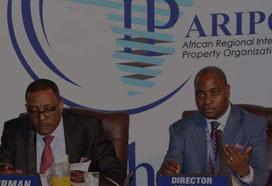 非洲工业产权组织
