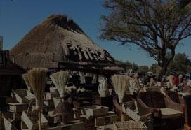 津巴布韦图片